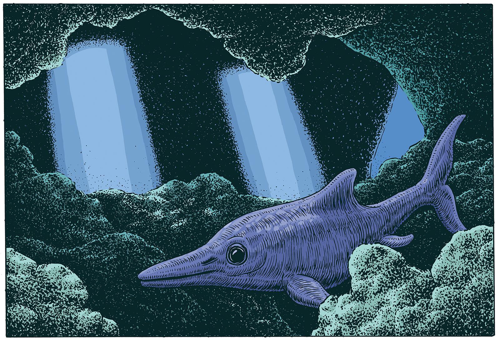 IchthyosaurusWEB
